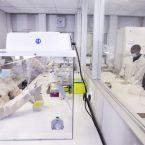 Das Port Elizabeth Virology Molecular Laboratory wird die Covid-19 Testkapazitäten in Südafrika erhöhen.